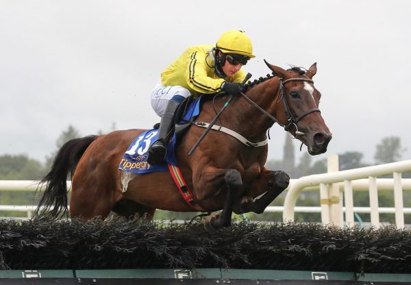 Finest Evermore  (Yeats) Wins The Maiden Hurdle At Tipperary