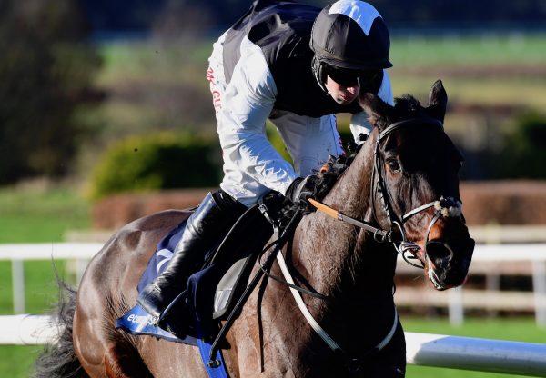 Flooring Porter (Yeats) Wins The Grade B Hurdle At Navan