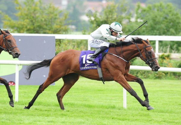 Fly Girl (The Gurkha) wins Leopardstown Maiden