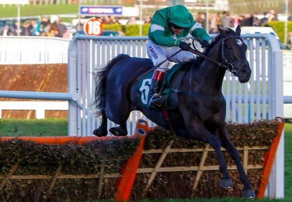 Scarpeta (Soldier Of Fortune) Wins On His Seasonal Return At Clonmel