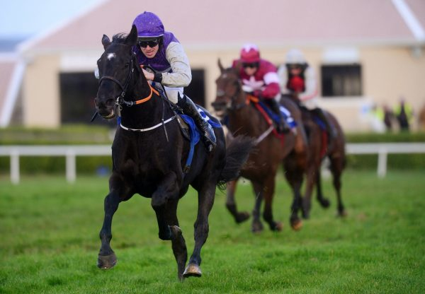 Fortune Street (Soldier Of Fortune) Wins At Wexford