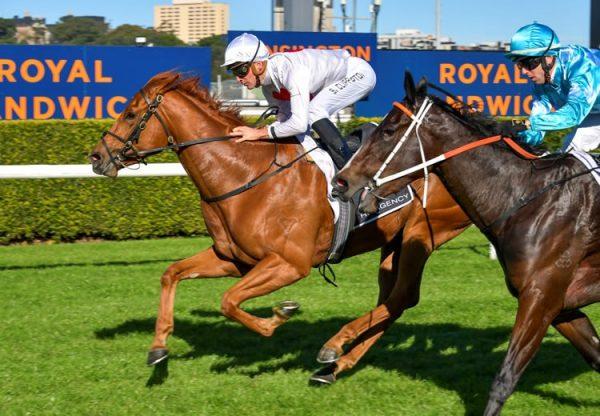 Forzanini (Pride Of Dubai) winning at Randwick