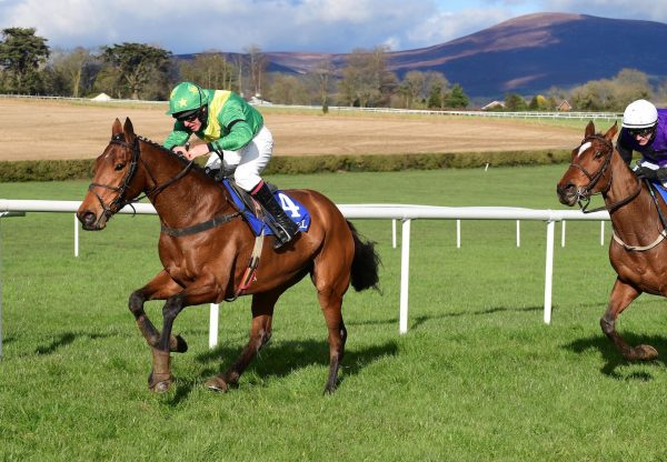 Fresh Appeal (Mahler) winning over hurdles at Clonmel
