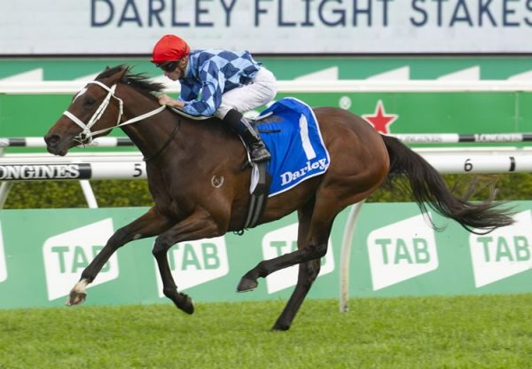Funstar (Adelaide) winning the ATC Flight Stakes (1600m) at Randwick