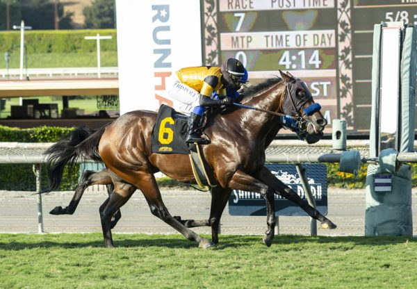 Galilean (Uncle Mo) Wins California Flag Handicap at Santa Anita