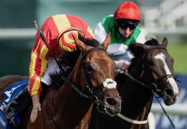 Illuminate (Zoffany) winning the G3 Albany Stakes at Royal Ascot