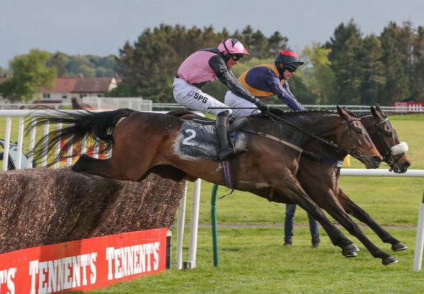Get  Out  The  Gate Wins His Chase Debut
