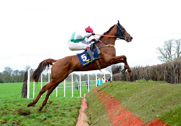 Getawaytonewbay (Getaway) winning the 6YO Mares Maiden p2p at Durrow