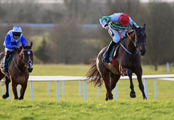 Ginto (Walk In The Park) Wins The Bumper At Navan