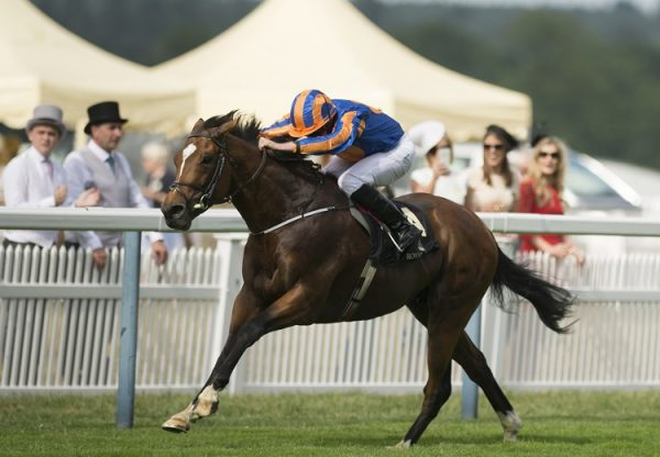 Gleneagles winning the St James's Palace Stakes at Royal Ascot