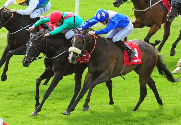 Gleneagles Filly Silence Please Makes It Two From Two