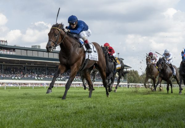 Golden Pal (Uncle Mo) winning the Gr.2 Woodford Stakes