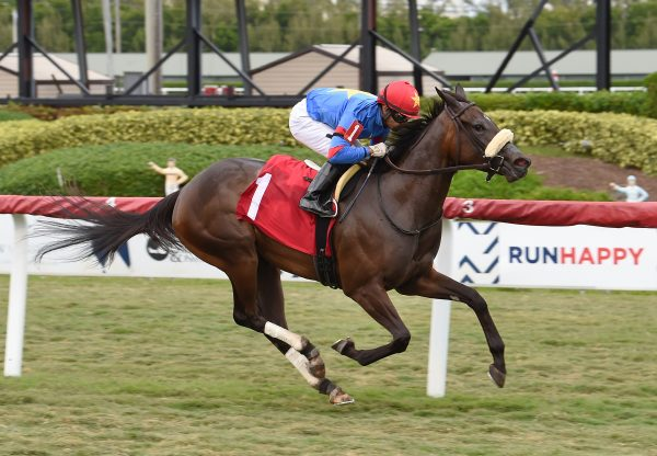 Gotta Go Mo (Uncle Mo) wins Gulfstream Park maiden