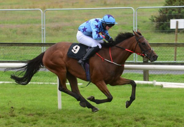 Hand In My Pocket Wins Her Bumper At Bellewstown 1