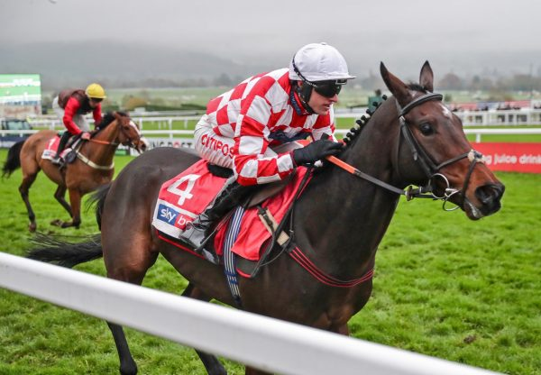 Hang In There (Yeats) Wins The Grade 2 Supreme Novices Trial at Cheltenham