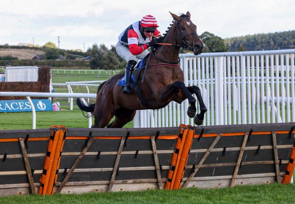 Haute Estime (Walk In The Park) Makes A Winning Hurdle Debut At Kelso