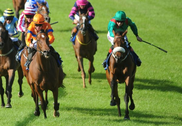 Hazakiyra Kickstarts A Double For Camelot