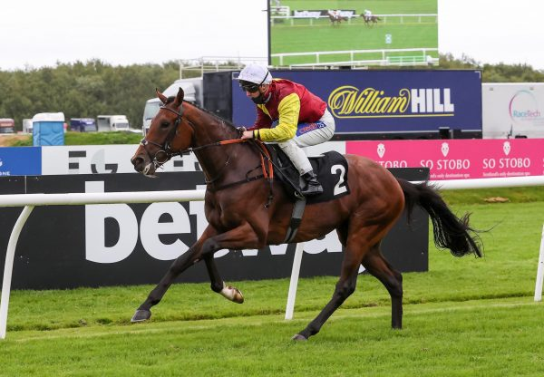 Heights Of Abraham (Starspangledbanner) wins at Musselburgh