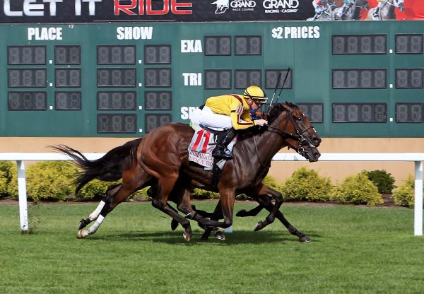 Hendy Woods (Uncle Mo) wins the Indiana Grand Stakes