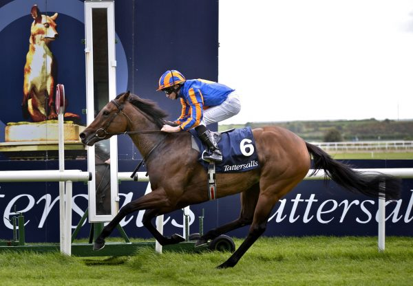 Hermosa (Galileo) Completed The Guineas Double