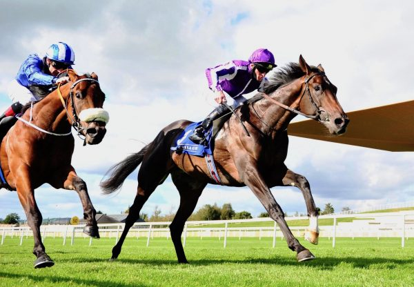 High Definition (Galileo) Wins The Group 2 Beresford Stakes at the Curragh