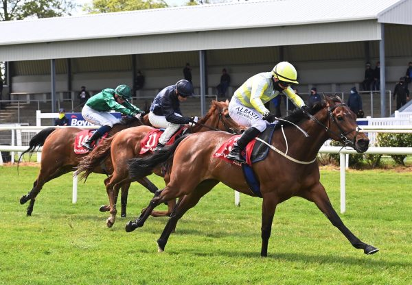 Holly Golightly (Gleneagles) Wins Her Maiden At Gowran Park