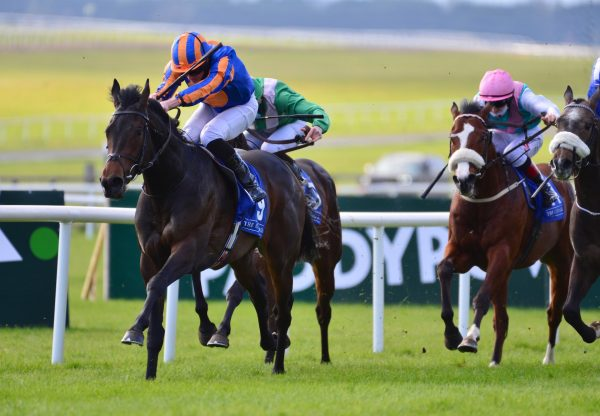 Horoscope (No Nay Never) Wins His Maiden At The Curragh