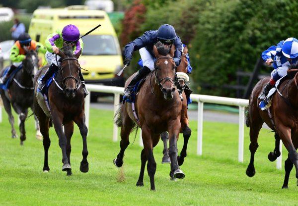 Howth (Churchill) Gets Off The Mark At Killarney