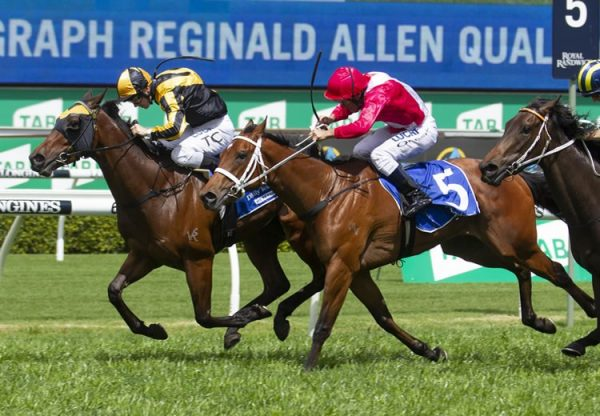 I Like It Easy (Pierro) winning the TC Reginald Allen Stakes at Randwick