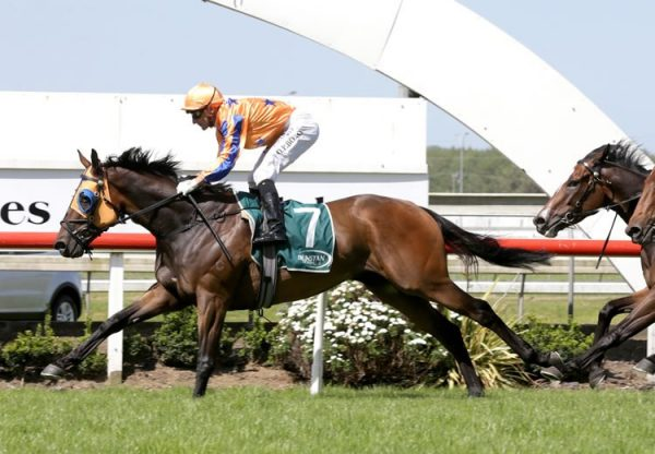 In A Twinkling (Fastnet Rock) winning the Gr.3 Ssangyong Counties Cup