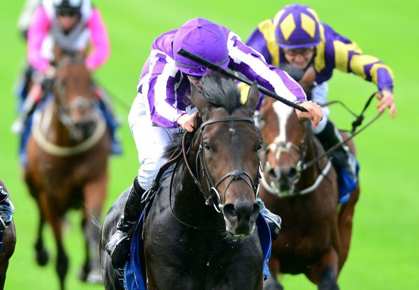 Innisfree (Galileo) wins the Gr.2 Beresford Stakes at the Curragh