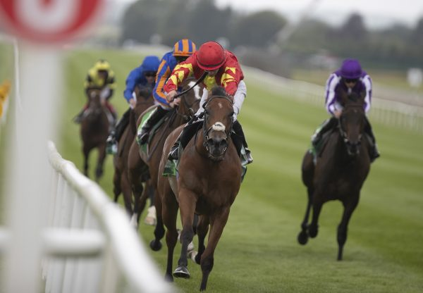Iridessa (Ruler Of The World) winning the Gr.1 Pretty Polly at the Curragh