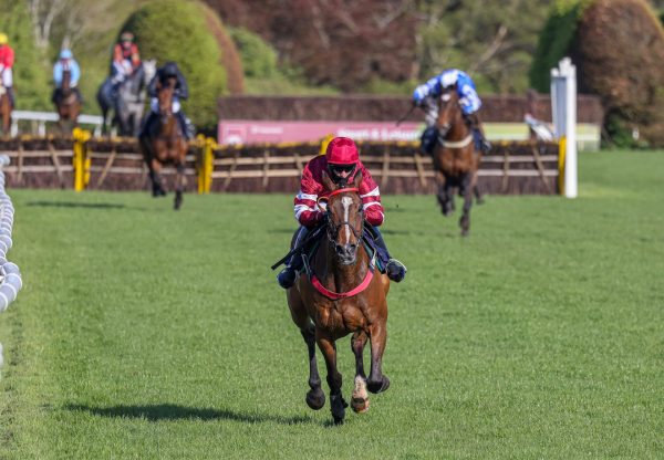 Mount Pelier (Milan) winning over fences at Galway