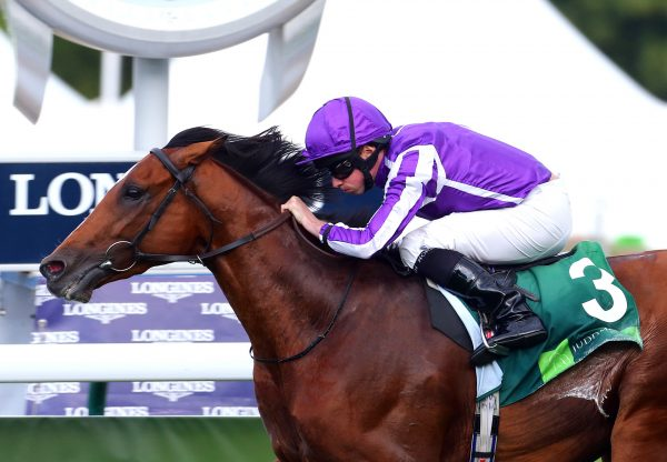 Japan (Galileo) winning the Gr.1 Grand Prix De Paris at ParisLongchamp