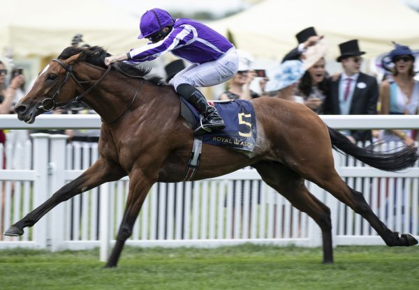 Japan Wins At Royal Ascot