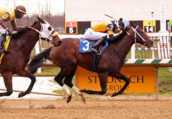 Jaxon Traveler (Munnings) Wins Maryland Juvenile Futurity