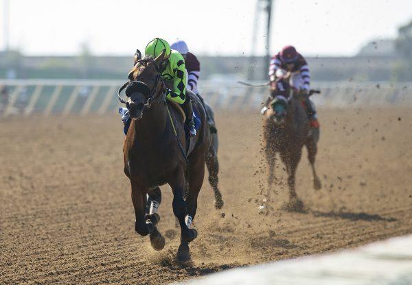 Joker Boy (Practical Joke) Wins Im Smokin Stakes at Del Mar