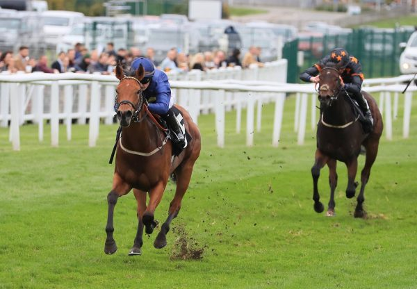 Jumbly (Gleneagles) Wins The Listed Radley Stakes At Newbury