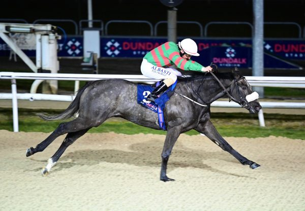 Jungle Cove (Mastercraftsman) Wins The Mile Maiden At Dundalk