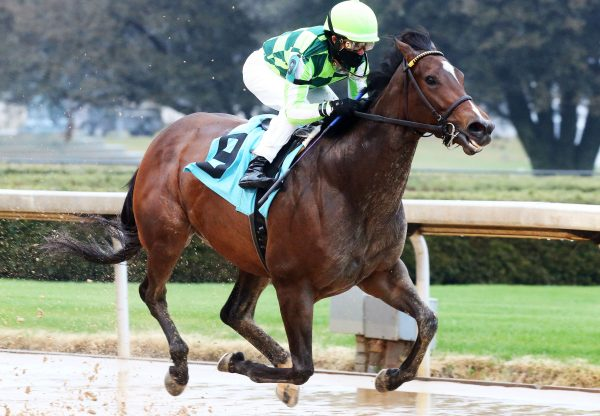 Kimari (Munnings) wins The Spring Fever Stakes at Oaklawn Park