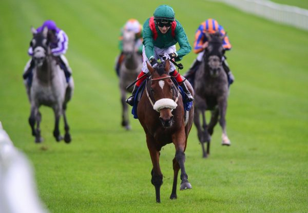 Kastasa (Rock Of Gibraltar) wins the Gr.3 Loughbrown Stakes at the Curragh
