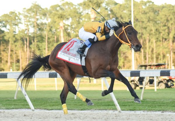 King Guillermo (Uncle Mo) winning the Tampa Bay Derby