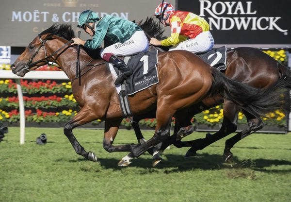 Kings Legacy winning the Gr.1 Champagne Stakes at Randwick