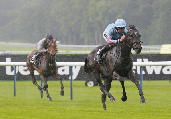 Klassique Becomes The Latest Stakes Winner By Galileo