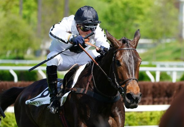 Lady Ardilaun Becomes The Latest Bt Winner By Soldier Of Fortune