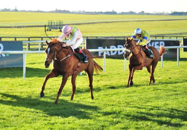 Lady Dahlia (Australia) Wins A Curragh Maiden