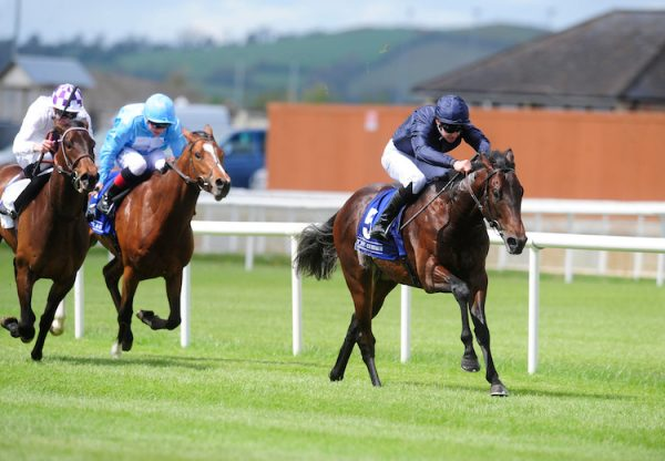 Land Force (No Nay Never) winning a maiden at the Curragh