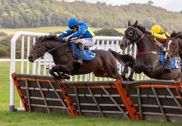 Langer Dan Becomes The First Winner By Ocovango