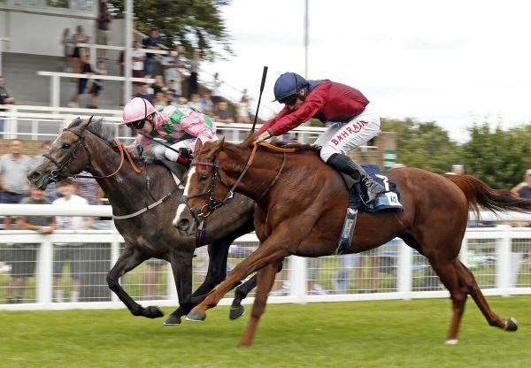 Lilac Road (Mastercraftsman) winning the Listed Upavon Stakes at Salisbury