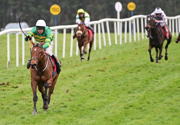 Limerick Lace (Walk In The Park) Impresses On Debut At Punchestown